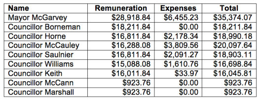 Council Remuneration 2015